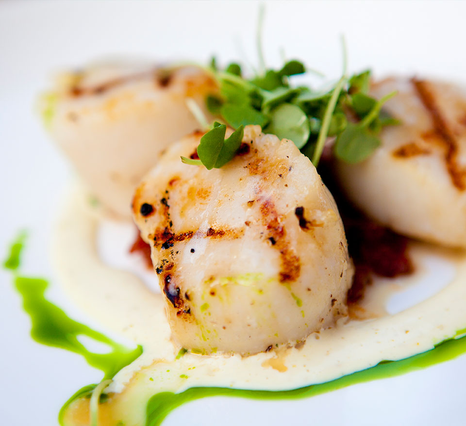 Grilled scallops with truffle